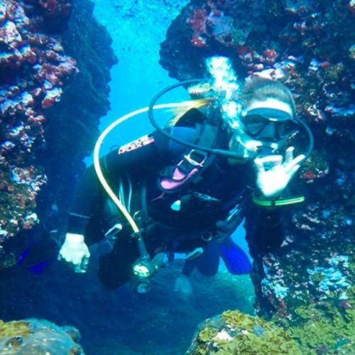 Buceo en el Sur, Gran Canaria